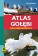 Atlas gołębi. Poradnik hodowcy