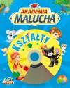 Akademia malucha Kształty z płytą CD