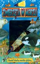 Zwierzęta w morzu Latarka - brak