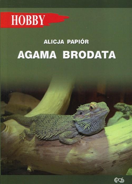 Agama brodata - Papiór Alicja
