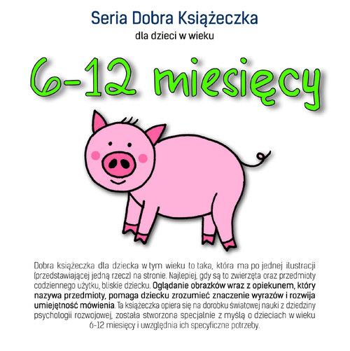 Seria Dobra Książeczka 6-12 miesięcy - Starok Agnieszka