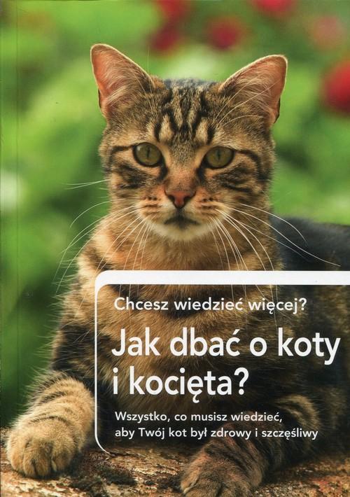 Jak dbać o koty i kocięta? Chcesz wiedzieć więcej? - brak